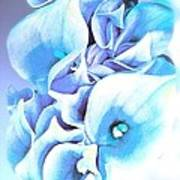 Calla Lilly So Soft Lilac And Blue Poster
