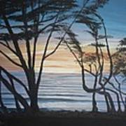 Cambria Cypress Trees At Sunset Poster