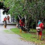 Camouflaged Leaf Blowers Working In Singapore Park Poster