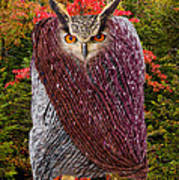 Camouflaged Owl Poster