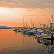 Campbell River Marina Poster by Nancy Harrison