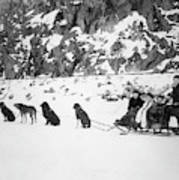 Canada Dog Sled, C1910 Poster