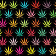 Cannabis Leaf Multi-coloured Pattern Poster