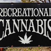 Cannabis Marijuana Store In Ridgway Poster