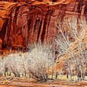 Canyon De Chelly - Spring II Poster