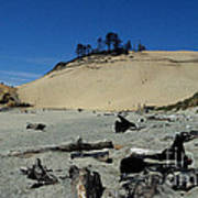 Cape Kiwanda Sand Dune Poster