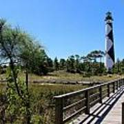Cape Lookout Walk Way Poster