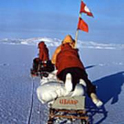 Capeevans-antarctica-g.punt-3 Poster
