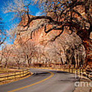 Capitol Reef Scenic Drive Poster