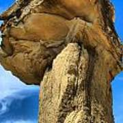 Caprock Mushroom Poster