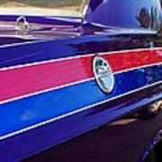 Car Colors Poster