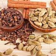 Cardamom Pods And Cloves Poster