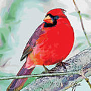 Cardinal In Ice Tree Poster