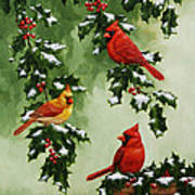 Cardinals And Holly - Version With Snow Poster by Crista Forest