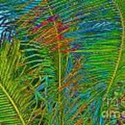 Caribbean Coconuts Poster