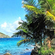 Caribbean - Palm Trees And Beach St. Thomas Vi Poster