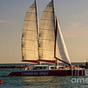 Caribbean Spirit Sails Miami Poster