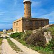 Carloforte Lighthouse Poster