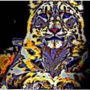 Carlos The Snow Leopard Poster