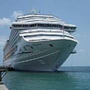 Carnival Freedom Bow Poster