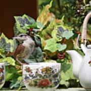 Carolina Wren And Tea Cups Poster