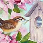 Carolina Wren In Springtime Poster