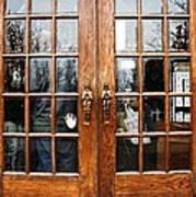 Carousel Doors Poster