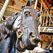 Carousel Horse Head Poster