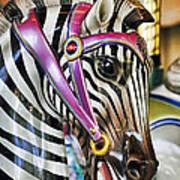 Carousel Zebra Poster