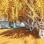 Carpet Of Yellow Leaves Poster