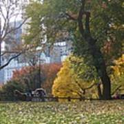 Carriage Ride Central Park In Autumn Poster