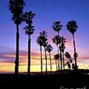 Carrillo Palms Poster