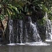 Cartoon - A Waterfall As Part Of An Exhibit Inside The Jurong Bird Park Poster