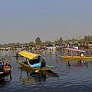 Cartoon - Multiple Number Of Shikaras On The Water Of The Dal Lake In Srinagar Poster