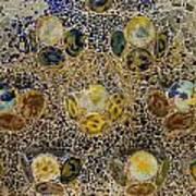 Casa Batllo Tiles Poster