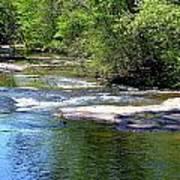 Cascade Creek Poster