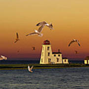 Cascumpec Lighthouse On Prince Edward Island Poster