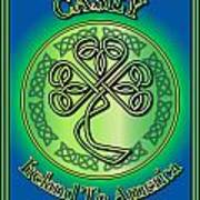 Casey Ireland To America Poster