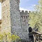Castle In Spring Poster