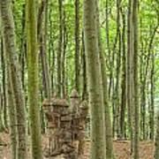 Castle Tree Stump Poster