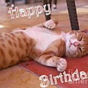 Cat Birthday Card Poster