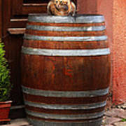 Cat Guarding A Wine Barrel In Alsace Poster