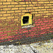 Cat In A Hole In A Wall Poster