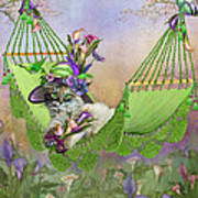 Cat In Calla Lily Hat Poster