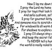 Cat Now I Lay Me Down To Sleep Poster