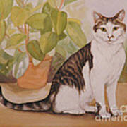 Cat With Plant Poster