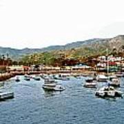 Catalina Island Poster