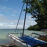 Catamaran On The Beach Poster