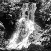 Cataract Falls Smoky Mountains Bw Poster