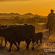 Cattle Drive 10 Poster